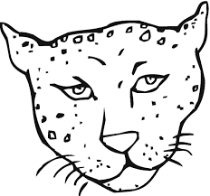 how to draw a cheetah for kids ourimgs com the hippest galleries