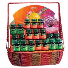 new year gift baskets imperial blessings of health this new year brand s