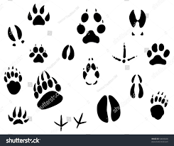 set animal footprints ecology design logo stock illustration