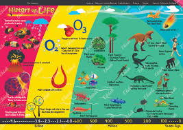 evolution history of evolve charts science educate