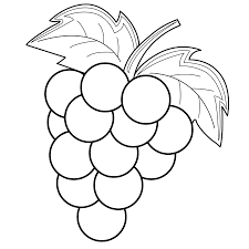 grapes coloring pages to download and print for free