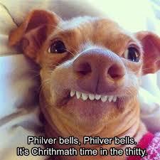 doggy singing memes lol