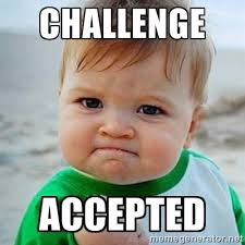 Challenge Accepted Meme - challenge accepted adult ing your life