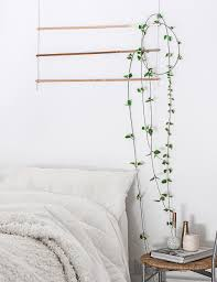 diy an indoor trellis for climbing vines gardenista