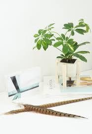 diy concrete wood planter stand