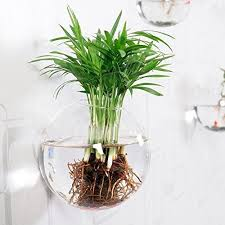 mkono glass hanging wall vase flower plant pot bubble container