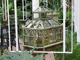 terrarium greenhouse remarkable terrarium flickr photo sharing
