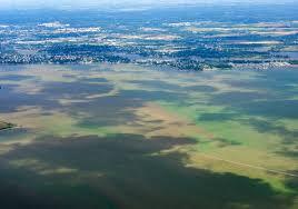 citizen scientists monitor lake erie algal blooms nasa