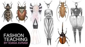 how to create your own fashion collection inspired by insects