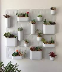 Indoor Gardening Ideas 13 Best Indoor Plants Images On Pinterest Vertical Gardens