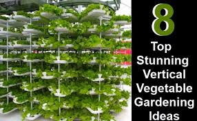 Diy Home Garden Ideas 8 Top Stunning Vertical Vegetable Gardening Ideas Diy Home