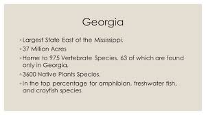native plants to georgia natural resources in georgia georgia largest state east of the