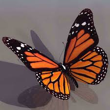 3d model of a beautiful butterfly 3d model 3ds max free