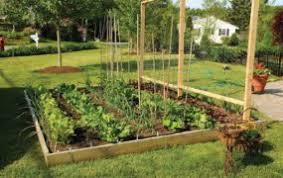 raised bed garden plans lowes acadrp org garden ideas