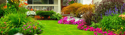 Home Interior Shows by Exellent Garden Shows Home And Plain Think Warm Thoughts Design Ideas
