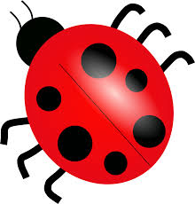 are ladybugs is a good luck or bad luck free download clip art