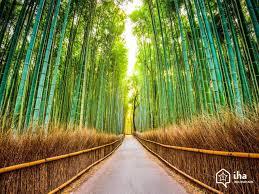 chambre d hote japon location japon dans une chambre d hôte pour vos vacances avec iha