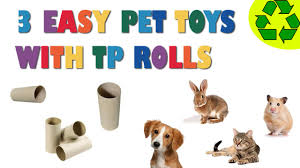how to make 3 easy pet toys made with toilet paper rolls pet