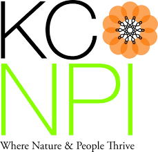 native kansas plants kcnpi the westport garden club