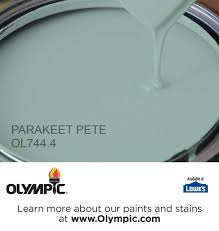 10 best bring on the color images on pinterest olympic paint