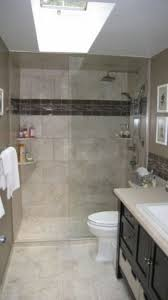 Bathroom Shower Remodeling Ideas by Best 25 Bathroom Remodeling Ideas On Pinterest Small Bathroom