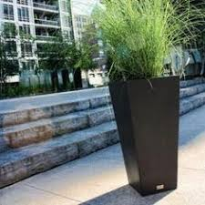 Home Depot Plastic Planters by Special Planters Nursery Buy Special Planters Online In India