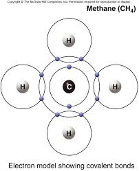 Atoms Bonding And The Periodic Table Basic Chemistry And The Macromolecules Important To Life