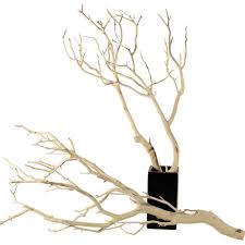 manzanita tree branches branches sandblasted 10 up to 96