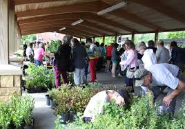 mn native plant society native plant and expo market planned june 4 at cub pavilion