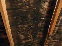 Removing Mold From Ceiling by Certified Attic Mold Remediation With Dry Ice Blasting In Nh