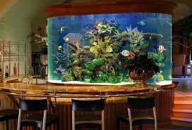 Fish Tank Reception Desk Stylish Home Decoration With Unique Fish Tanks Ergonomic Office
