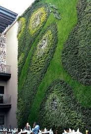 the largest living green wall in north america building for