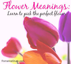 purple color meaning romantic colors flower color meanings romancefromtheheart com