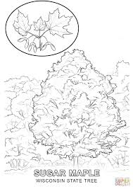fall tree coloring page autumn tree coloring pages printable free
