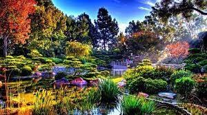 sunlight l for plants flowers plants sunlight garden japan pond japanese nature bridge