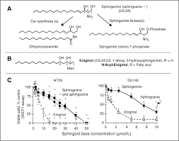 enigmol a novel sphingolipid analogue with anticancer activity