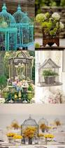 home interior bird cage 228 best decorating with bird cages images on pinterest birdcage