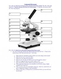 compound light microscope function worksheets microscope parts worksheet cricmag free worksheets for