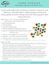 blog u2014 summit dog training