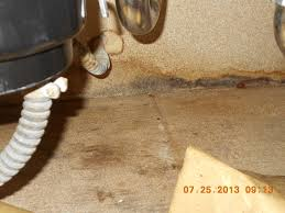 mold under kitchen sink mold inspection cfl environmental
