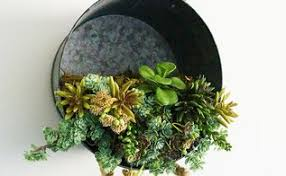 hanging succulent planter hometalk