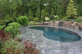 Backyard Swimming Pool Landscaping Ideas Best Picture Of Backyard Swimming Pool Designs Ideas With Bottom