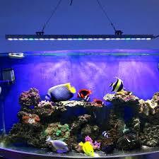 led lights for coral tanks coral led aquarium lighting coral box m1 led aquarium lighting