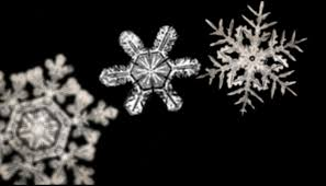 snowflake wilson bentley holiday science science friday
