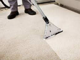 Carpet Cleaning Machines For Rent Best 25 Carpet Cleaning Equipment Ideas On Pinterest Skull
