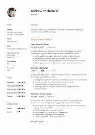 bartender resume format description of a bartender for resume resume description for