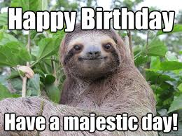Funny Sloth Memes - happy birthday have a majestic day funny sloth meme images