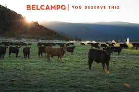 belcampo santa monica los angeles email signup background image