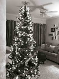 white silver black tree creates this modern black