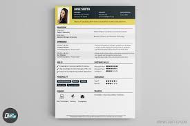 art director resume sample cv maker professional cv examples online cv builder craftcv cv sample cv builder